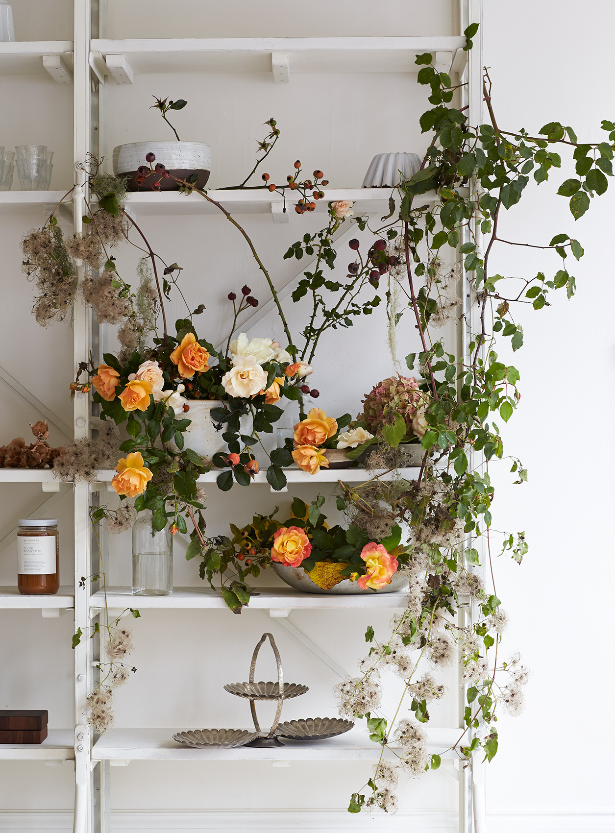 Flowers: Shelved